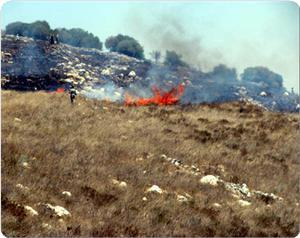 images_News_2011_05_14_valley-fire_300_0.jpg